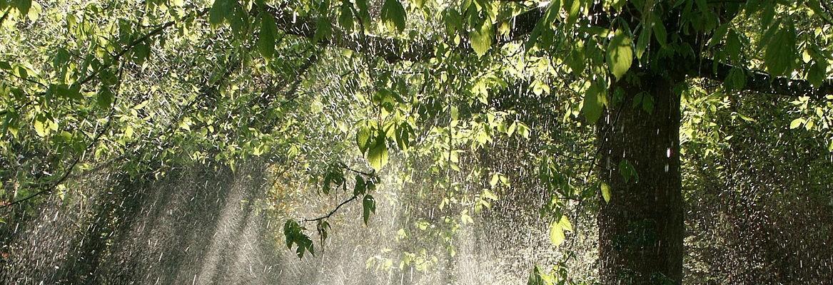Tanke og udstyr til regnvandsanlæg